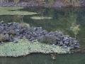 basalt 022