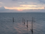 2014-08-15 Segelfreizeit 2014 Ijsselmeer